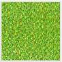 Verde oliva 16