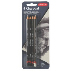 Carboncillo Charcoal 4