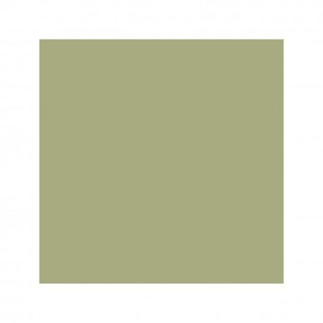 """Pigmento Belga Verde Mostaza Especial """"Dragon"""" Ref. 16551 Libra"""