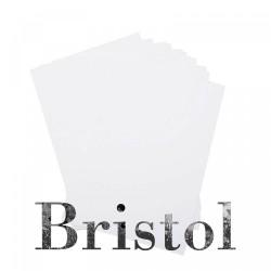 Cartón Ilustración Bristol Aleman Sin Acido Tres Grosores 70 x 100 Cms.