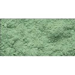 Pigmento Sennelier 213 Tierra Verde PG23 x 120 Grs.