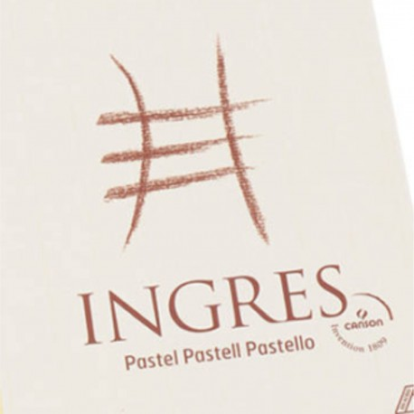 Papel Ingres Canson 100 grs Seis Colores